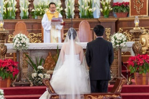 wyrlo_cresel_wedding_raduban_photography_auckland_new_zealand-0027