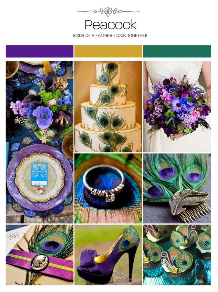 weddings_illustrated_peacock_inspiration_board_ring_photo_by_raduban_photography_wedding_photographer_auckland_new_zealand